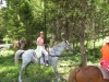 horseback-63-1